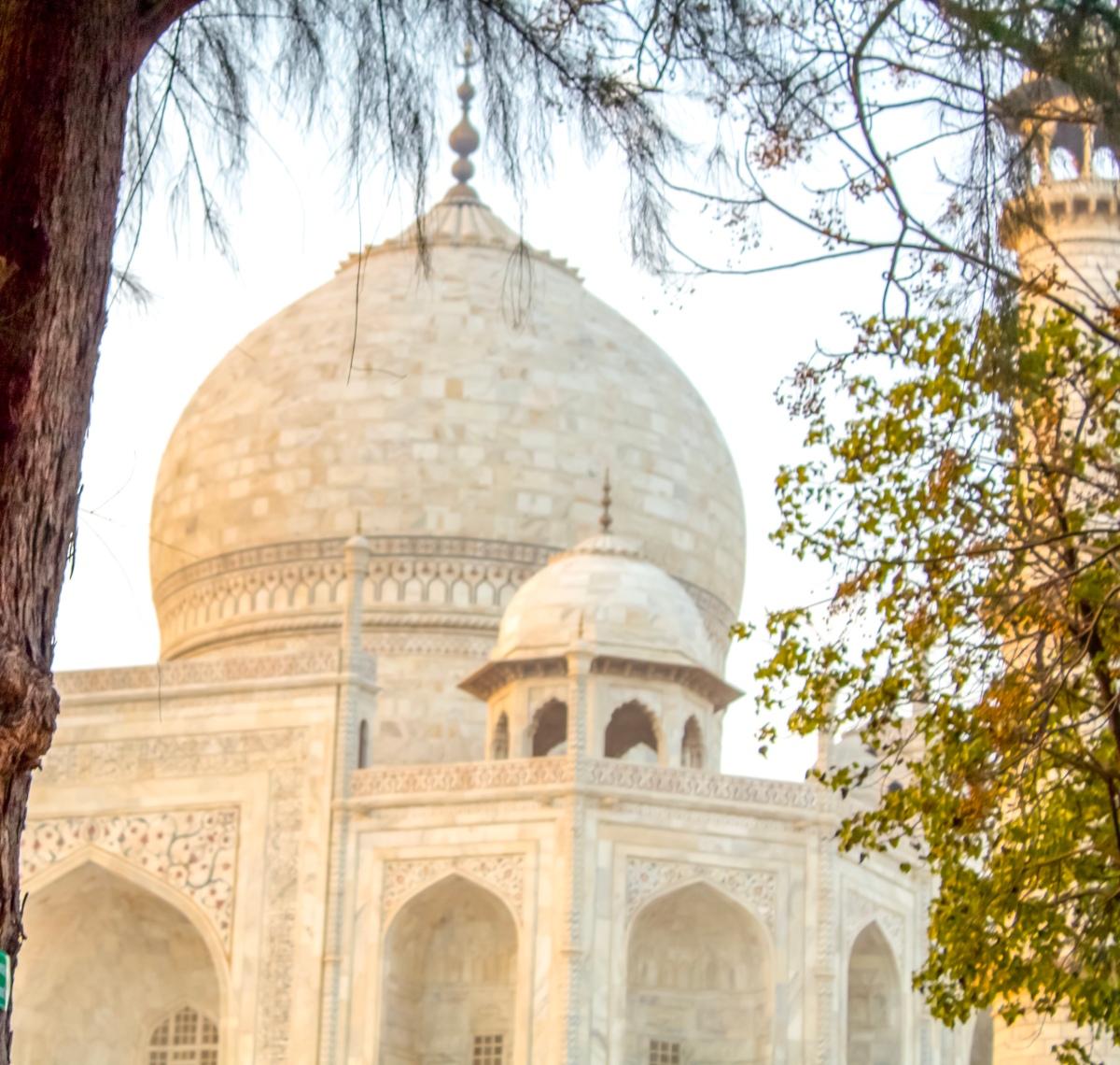 Mission NWW : Visiting Taj Mahal